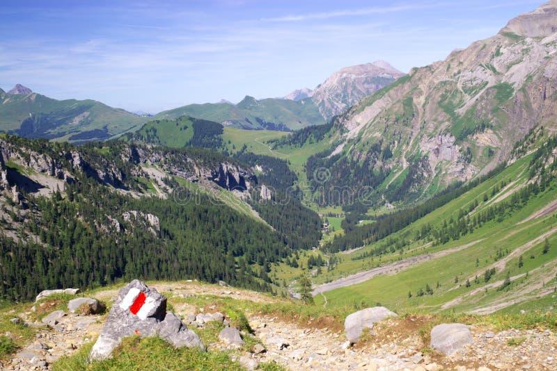 Montagnes alpestres d'été photographie stock libre de droits