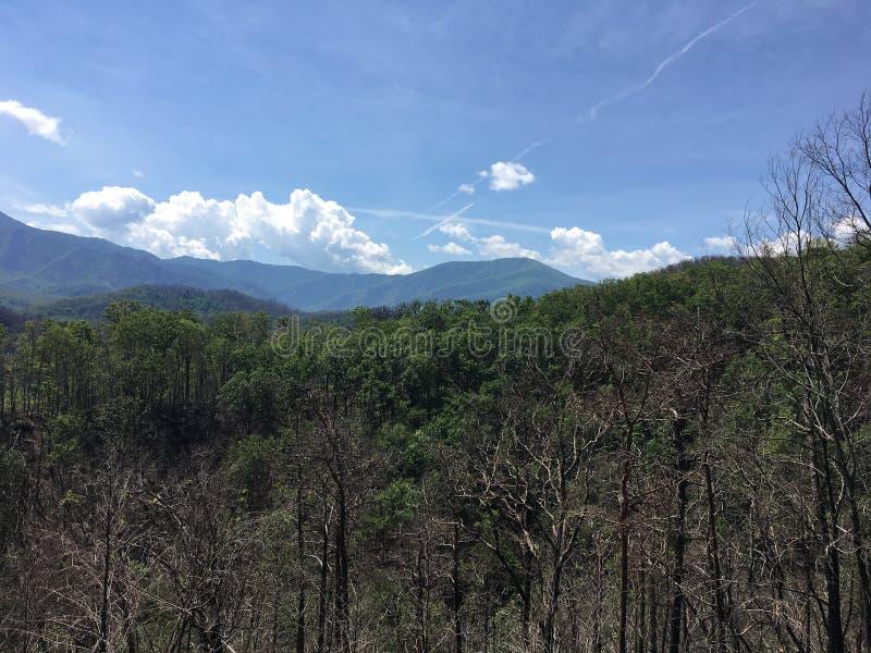 Montagnes avec le ciel partiellement opacifié et stérile verts images stock