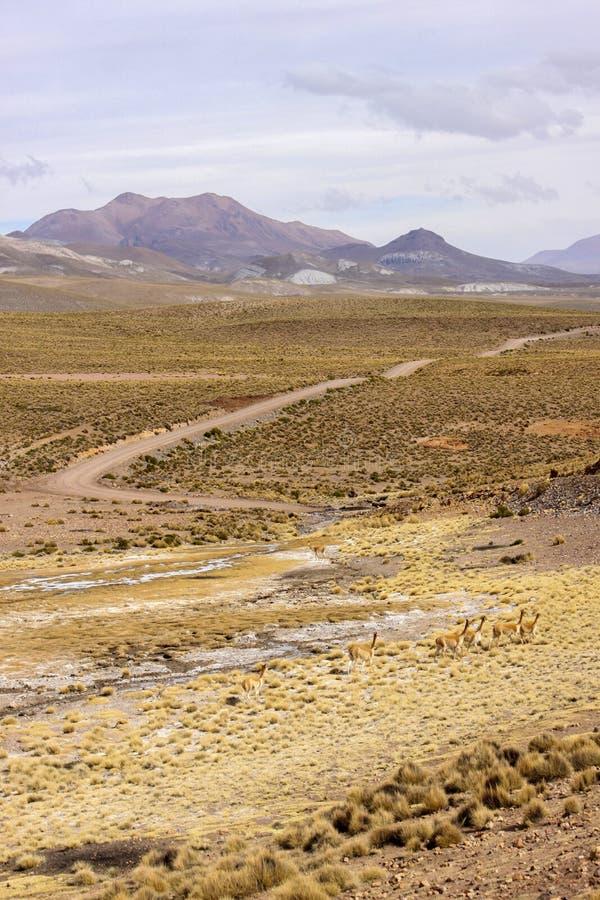 Montagnes boliviennes image libre de droits