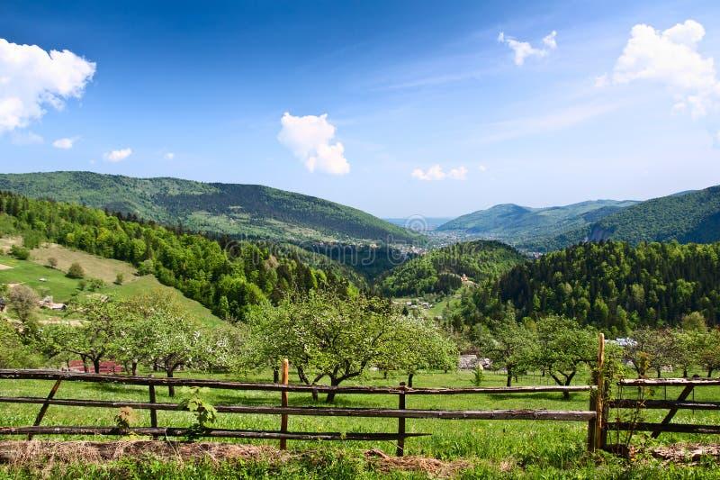 Montagnes carpathiennes. photographie stock libre de droits