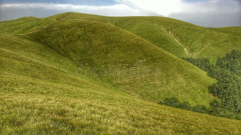 Montagnes carpathiennes photographie stock libre de droits
