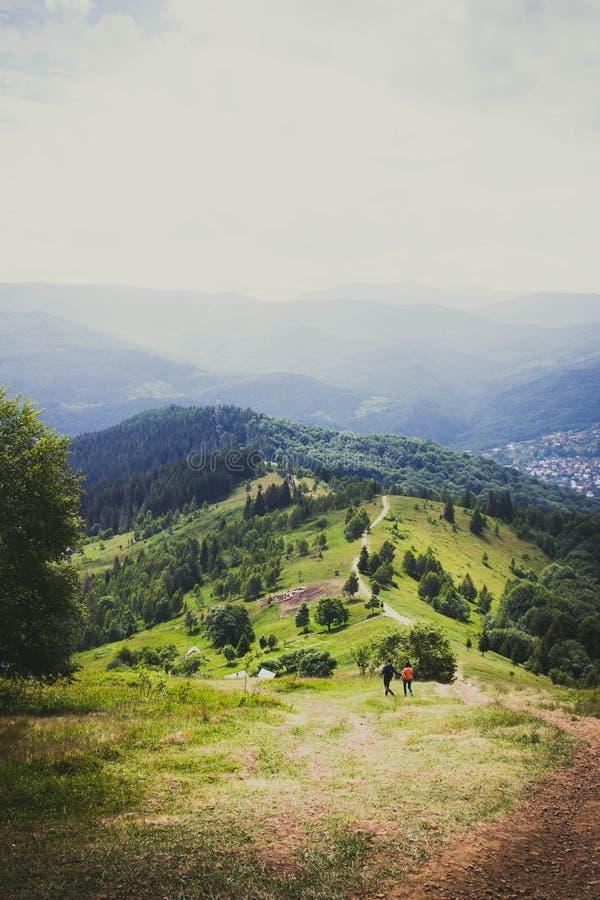 Montagnes carpathiennes majestueuses couvertes d'arbres coniféres photos stock