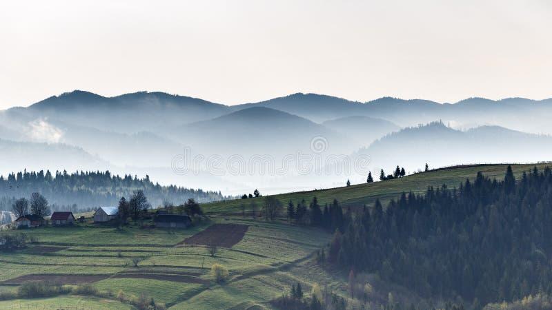 Montagnes carpathiennes Matin brumeux Automne dans les montagnes images libres de droits