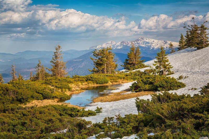 Montagnes carpathiennes Ukraine photos libres de droits