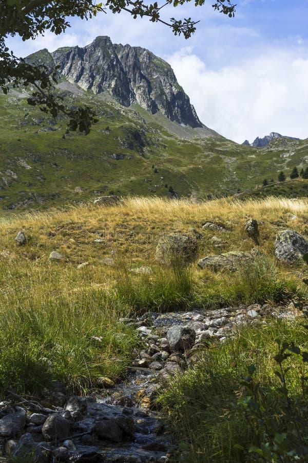 Montagnes, champs et torrents photos stock