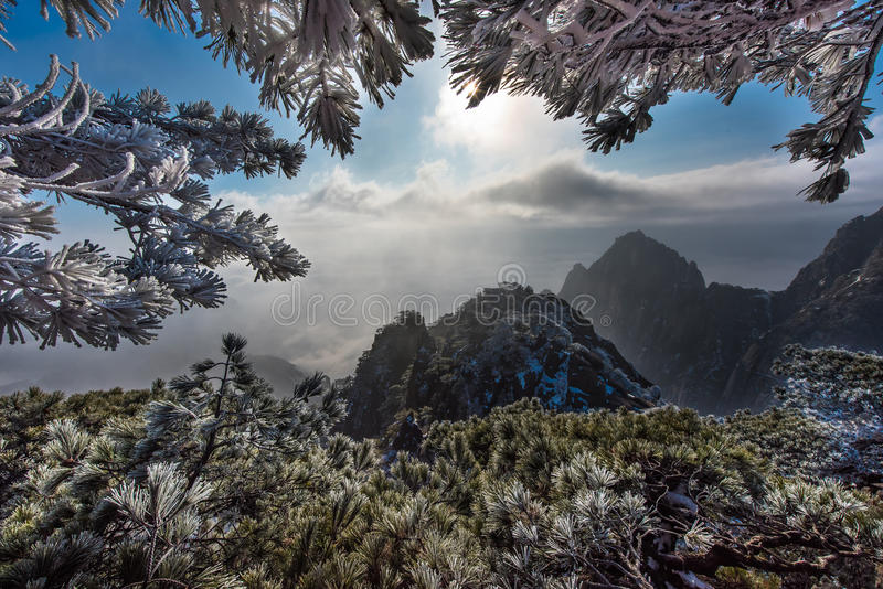 Montagnes Chine de jaune de Huangshan image stock