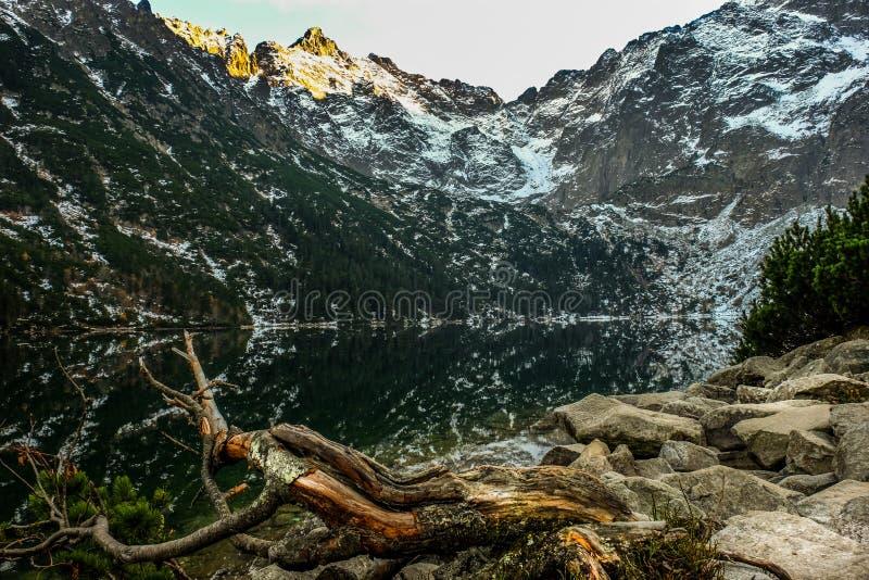 montagnes corses de montagne de lac de laque du creno de France de la Corse images libres de droits