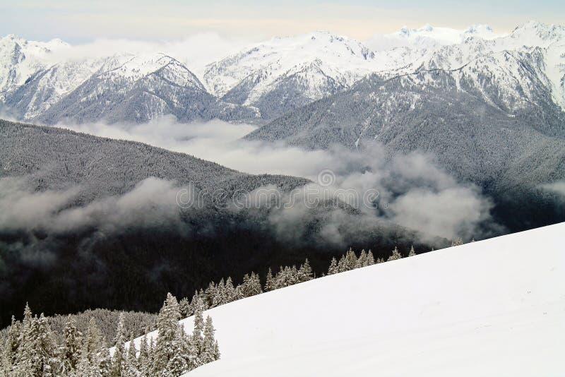 Montagnes couronnées de neige au delà d'un champ de Milou images libres de droits