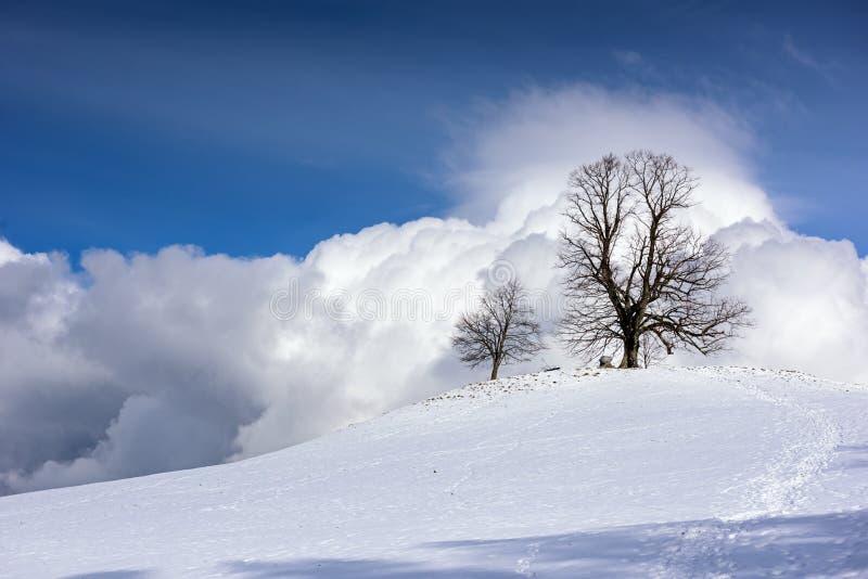 Montagnes couronnées de neige un jour ensoleillé d'hiver photographie stock libre de droits