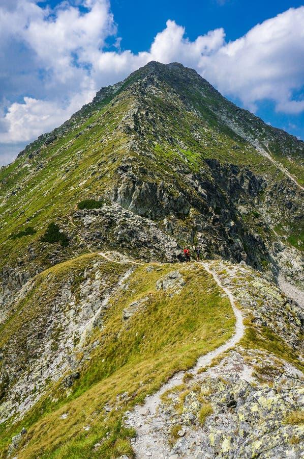 Montagnes d'été image stock