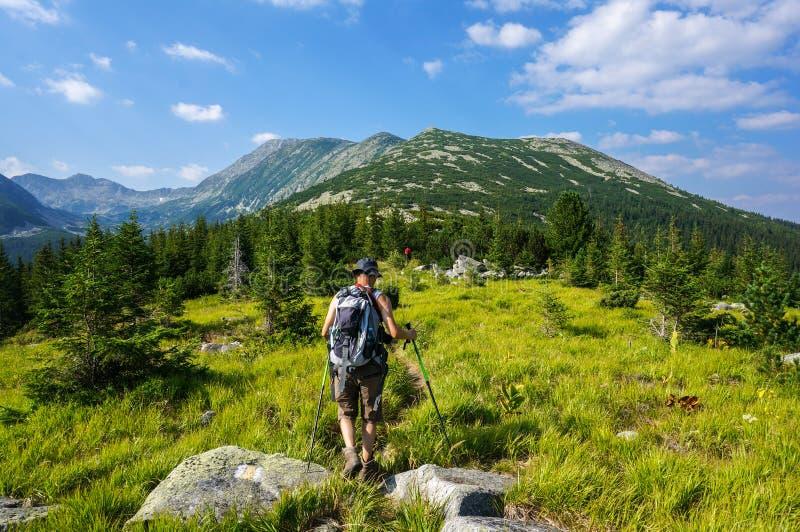 Montagnes d'été photo libre de droits