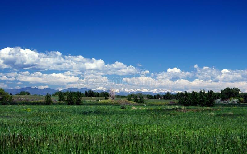 Montagnes d'été chez Cherry Creek State Park photos libres de droits