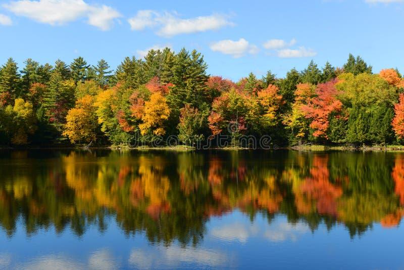 Montagnes d'Adrondack dans l'automne, New York, Etats-Unis photos libres de droits