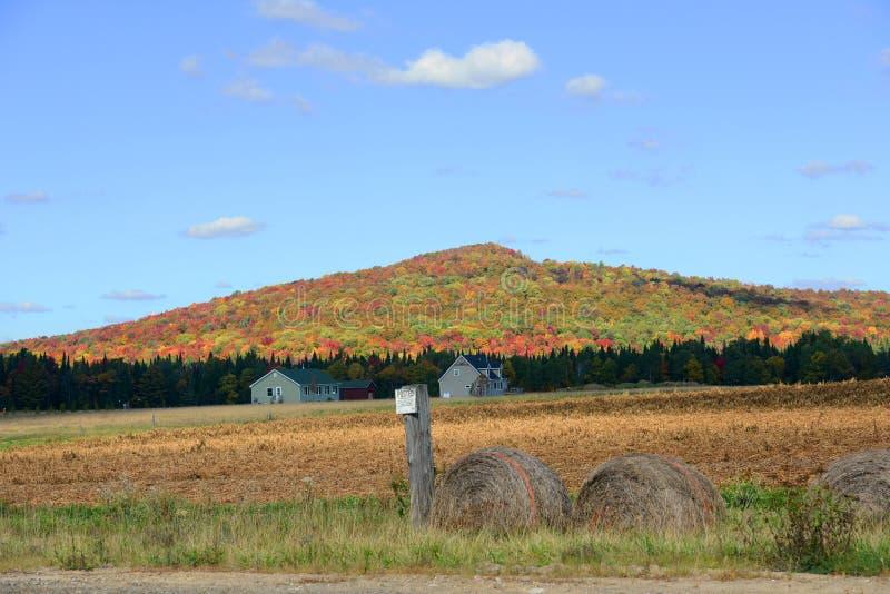 Montagnes d'Adrondack dans l'automne, New York, Etats-Unis photographie stock