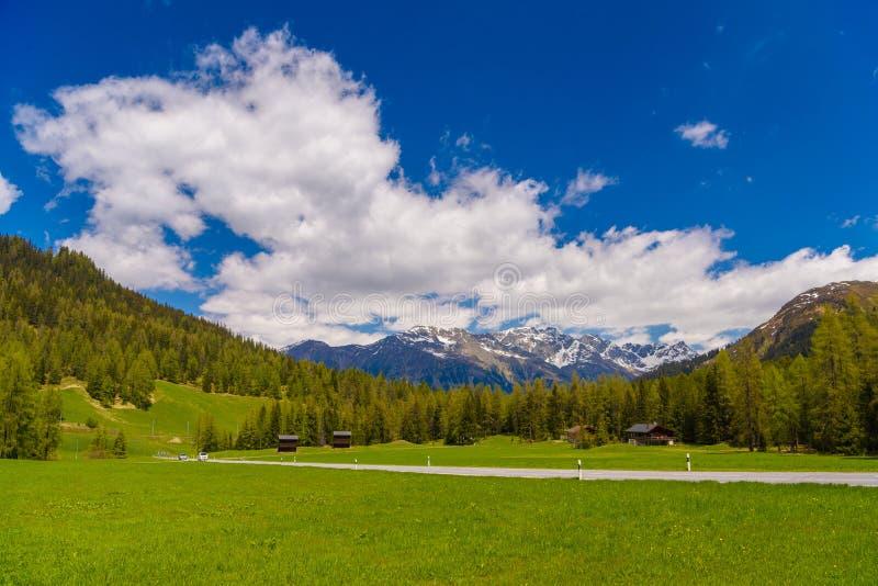 Montagnes d'Alpes couvertes de forêt de pin, Davos, Graubuenden, commutateur photos stock