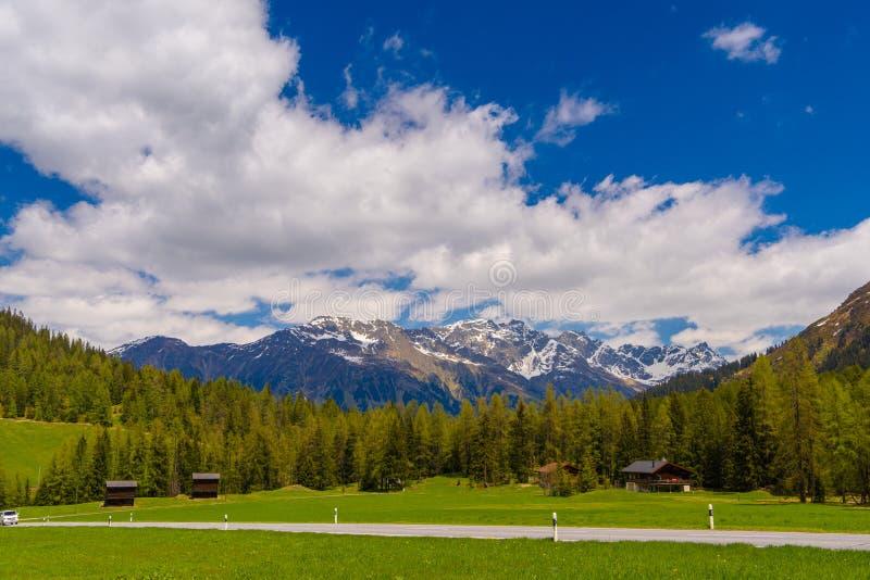 Montagnes d'Alpes couvertes de forêt de pin, Davos, Graubuenden, commutateur photographie stock