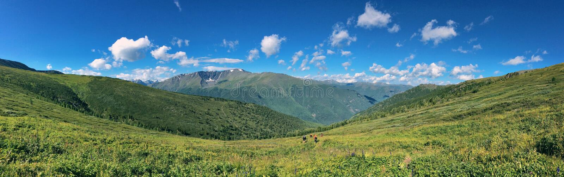 Download Montagnes d'Altai photo stock. Image du vert, panorama - 77162866