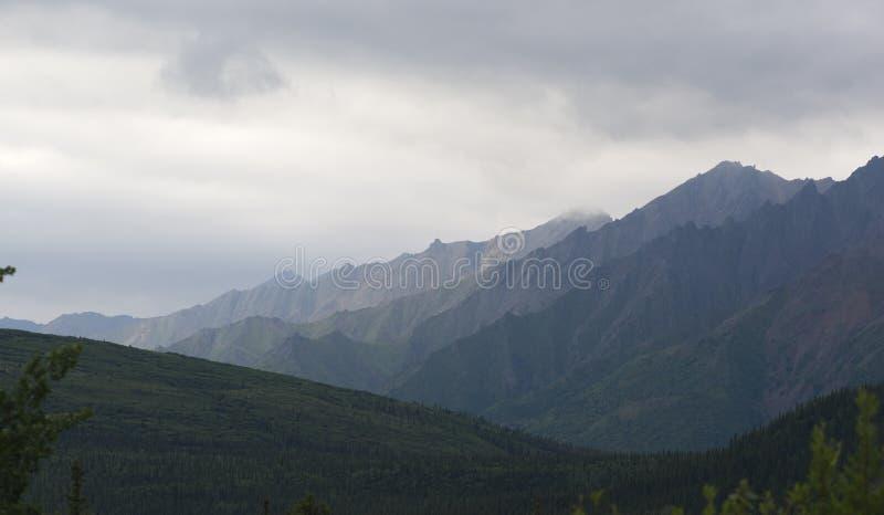 Montagnes dans Denali images stock