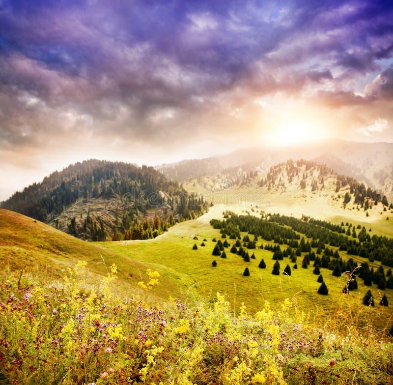Montagnes dans Kazakhstan photo libre de droits