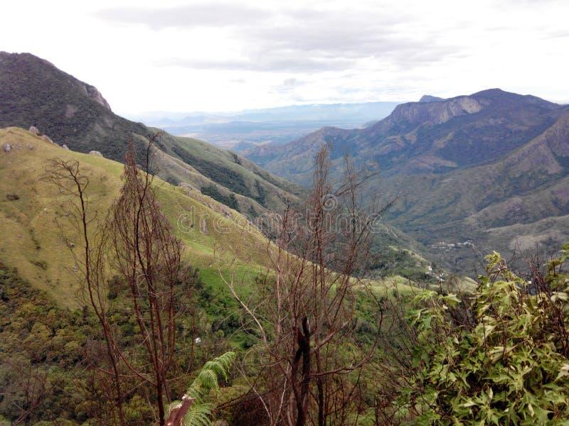 Montagnes dans la verdure photos stock