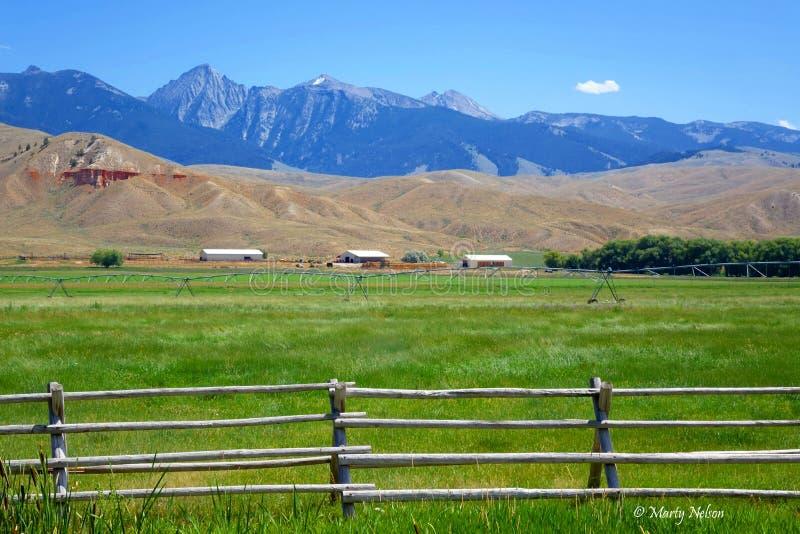 Montagnes de Beaverhead - Idaho images stock
