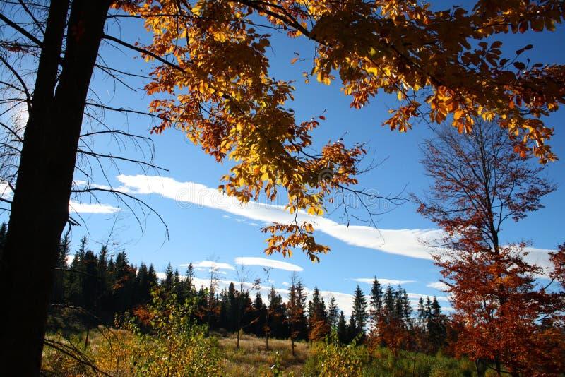 Montagnes de Beskydy pendant l'automne image stock