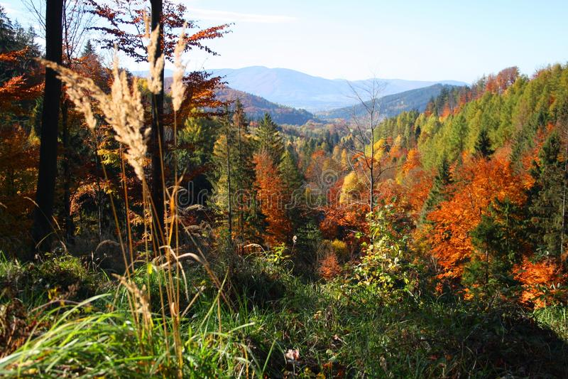 Montagnes de Beskydy pendant l'automne photographie stock libre de droits