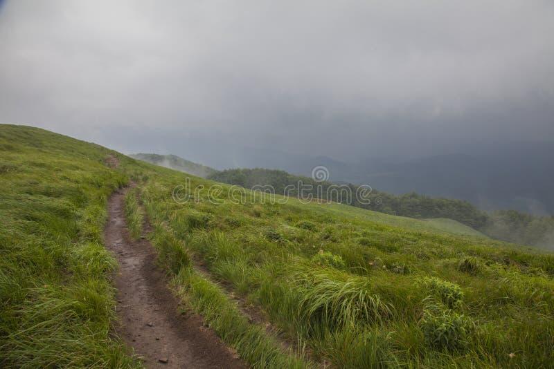 Montagnes de Bieszczady, Pologne du sud, l'Europe - herbe verte juteuse et collines foncées un jour orageux image stock
