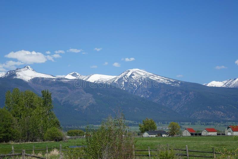 Montagnes de Bitterroot près de Hamilton, Montana image stock