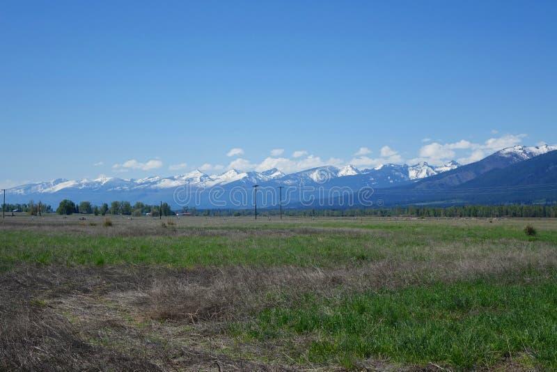 Montagnes de Bitterroot près de Hamilton, Montana images stock