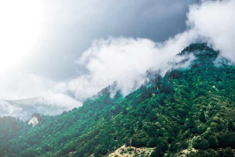 Montagnes de brouillard de matin photos stock