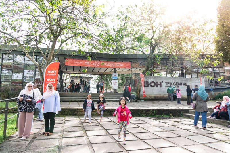 MONTAGNES DE CAMERON, MALAISIE, LE 6 AVRIL 2019 : De touristes faisant leur manière au centre de thé de BOH Sungai Palas, tache p image libre de droits