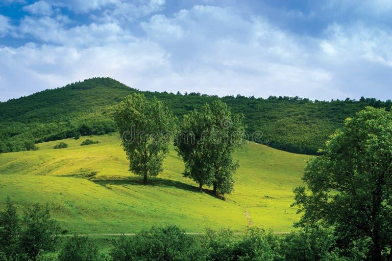 Montagnes de campagne image libre de droits