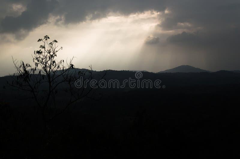 Montagnes de coucher du soleil et un arbre images libres de droits