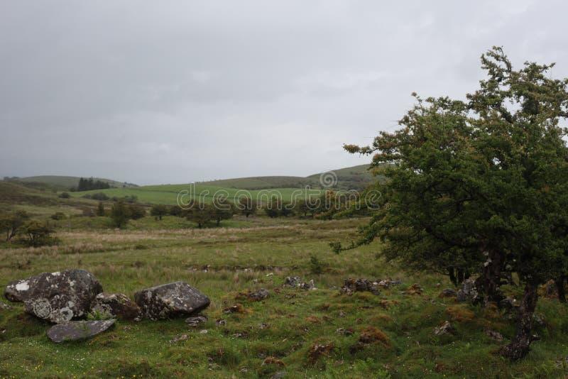 Montagnes de Cuilcagh, Cavan images stock