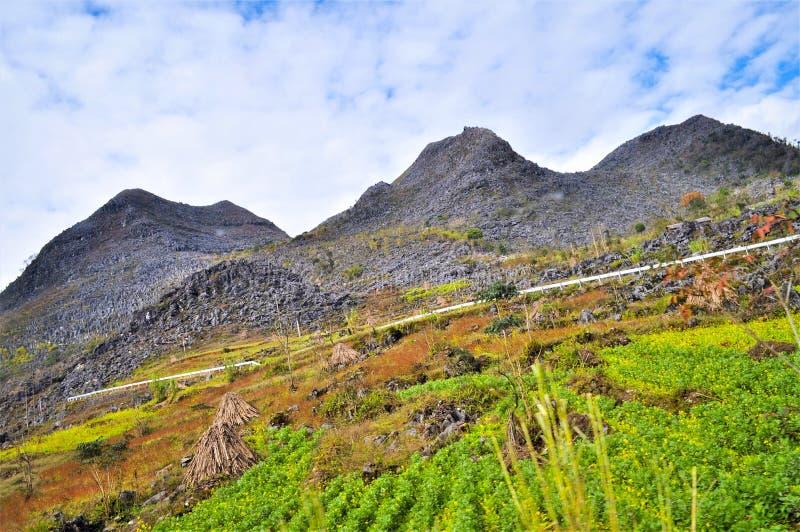 Montagnes de Ha Giang Vietnam images libres de droits