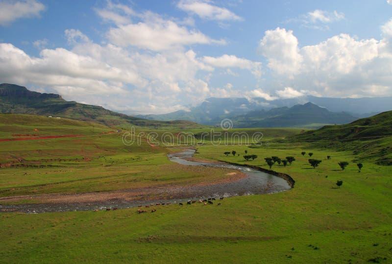 Montagnes de l'Afrique du Sud Drakensberg image libre de droits