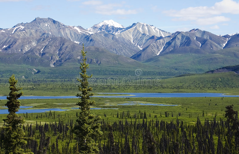 Montagnes de l'Alaska photo stock