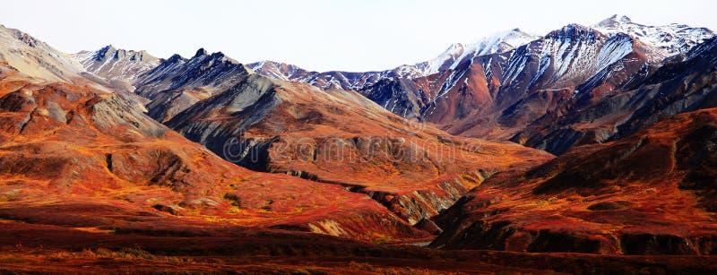 Montagnes de l'Alaska photographie stock libre de droits