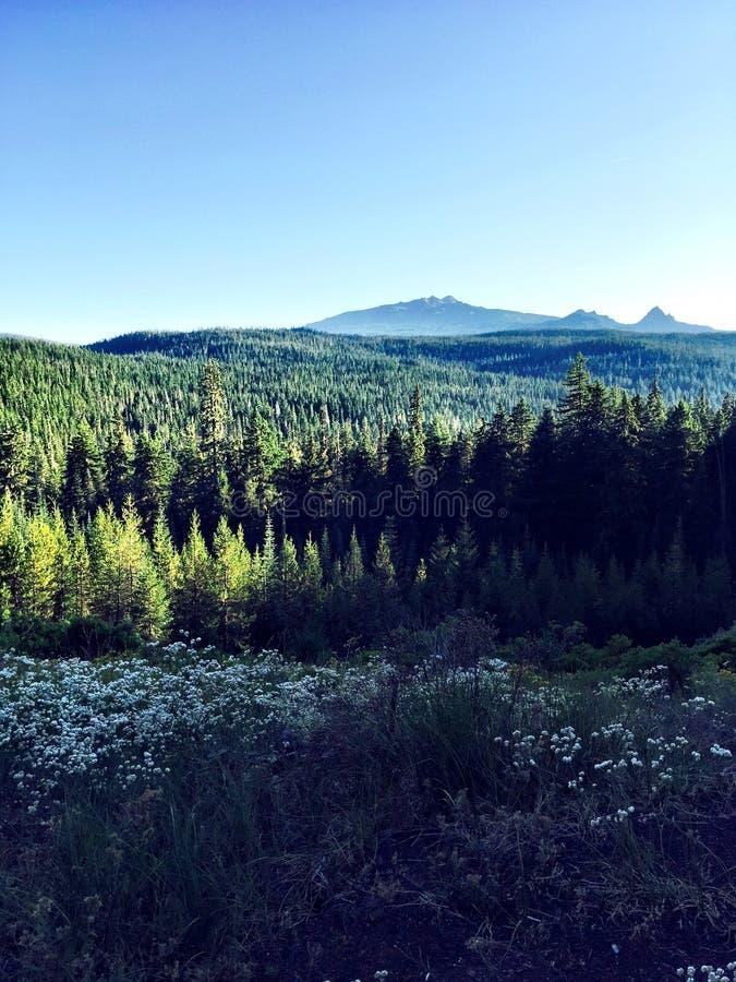 Montagnes de l'Orégon images stock