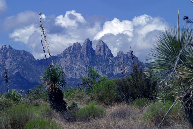 Montagnes de Las Cruces photos libres de droits