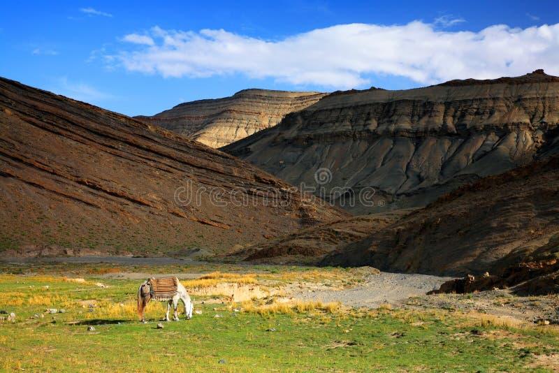 montagnes de milieu d'atlas photographie stock libre de droits