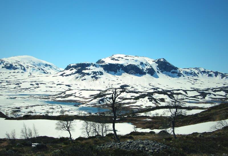 Montagnes de neige photographie stock