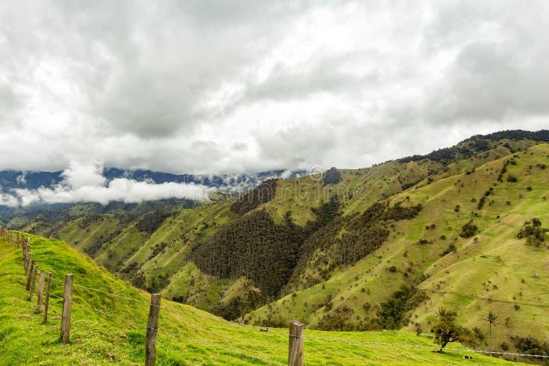 Montagnes de pâturage photo stock