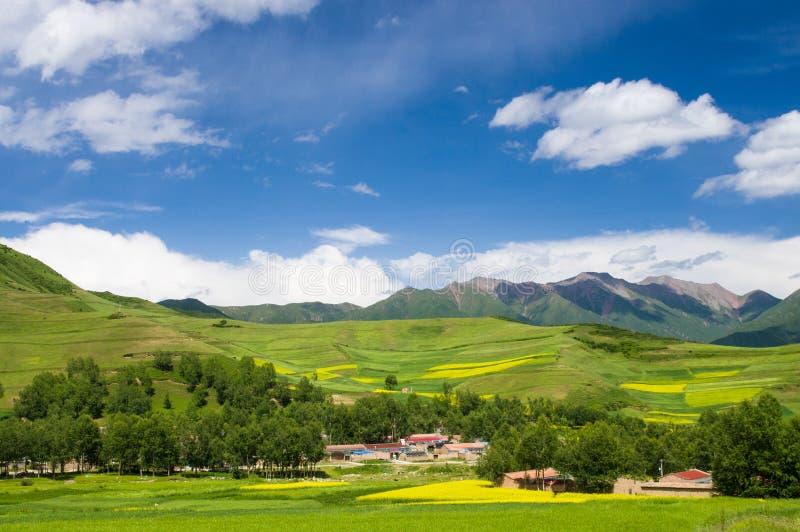 Montagnes de Qilian photos libres de droits