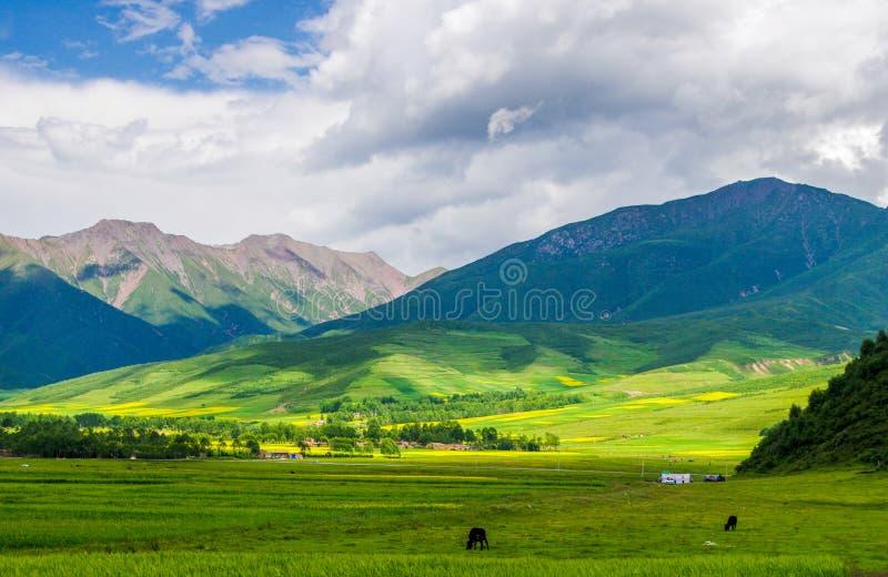 Montagnes de Qilian images stock