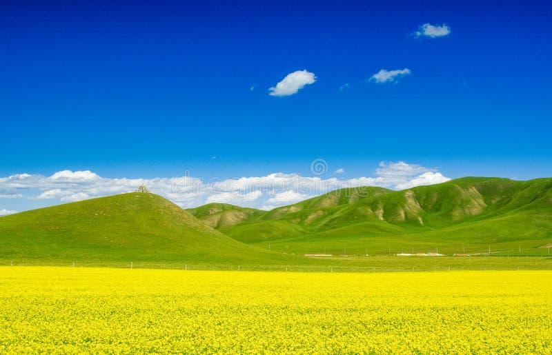 Montagnes de Qilian images libres de droits