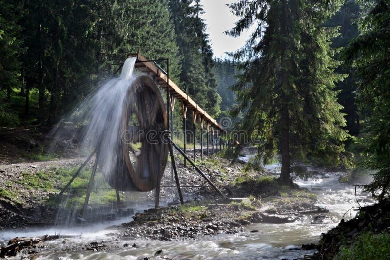 Montagnes de Rodna en Roumanie - roue d'eau à la source de rivière d'Iza photos stock