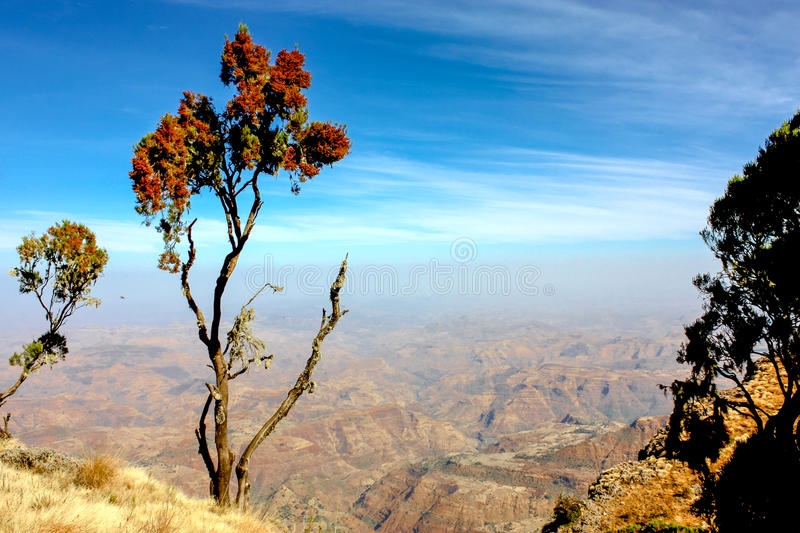 Montagnes de Simien photos stock