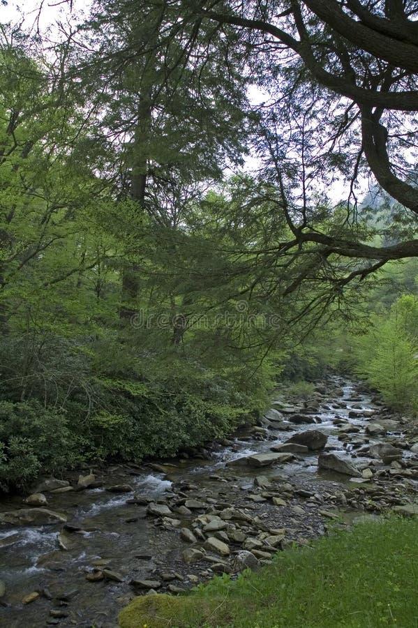 Montagnes de Smokey, route d'intervalle au printemps photo stock